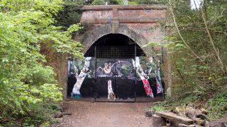 Sydenham Hill Wood は、色んな意味でワイルドな森でしたw【Bluebells in London】
